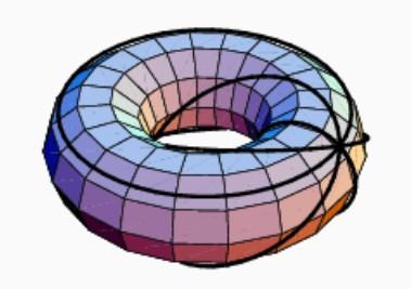 bc7toruscircles