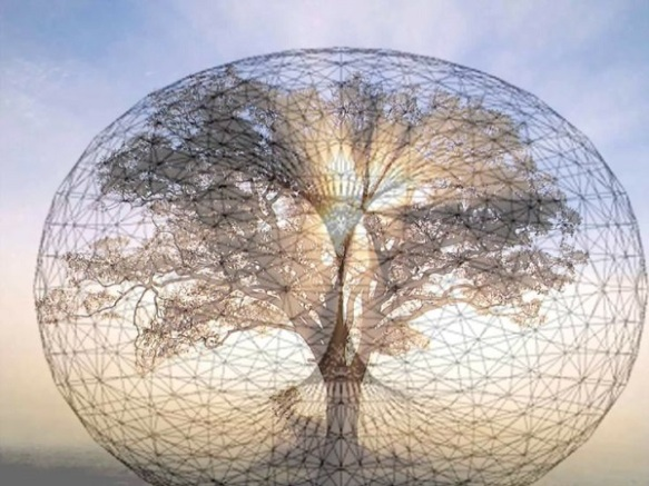 universal-tree