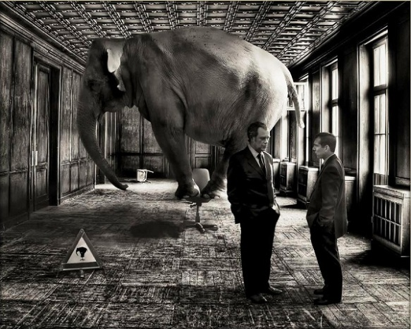 4-elephant-in-room